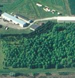 farm150