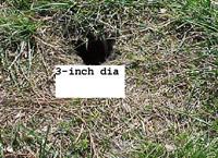 groundholes