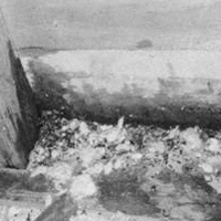 Flying squirrel droppings and urine stains directly below an attic vent in the attic.