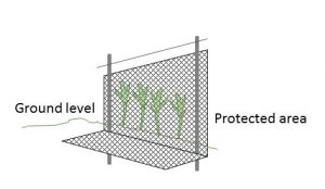 This garden fence has buried skirting, sometimes called an apron, to prevent animals from digging underneath.