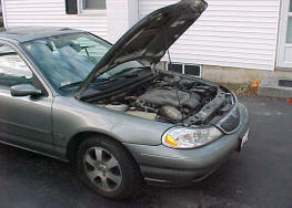A mouse nest in a car engine can cause problems.