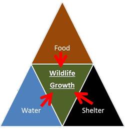 Wildlife growth triad