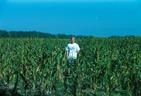 Jason Gilsdorf in a Nebraska cornfield